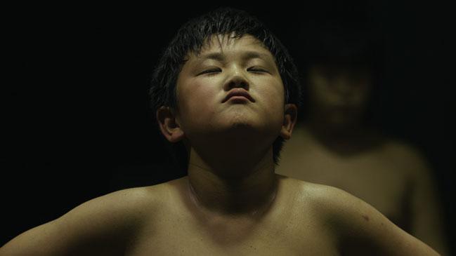 Boy in the Dohyo